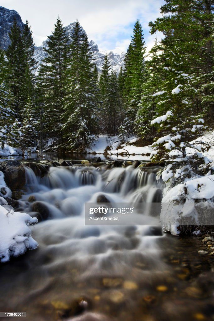 Water softly flows doen mountain creek, winter : Stock Photo