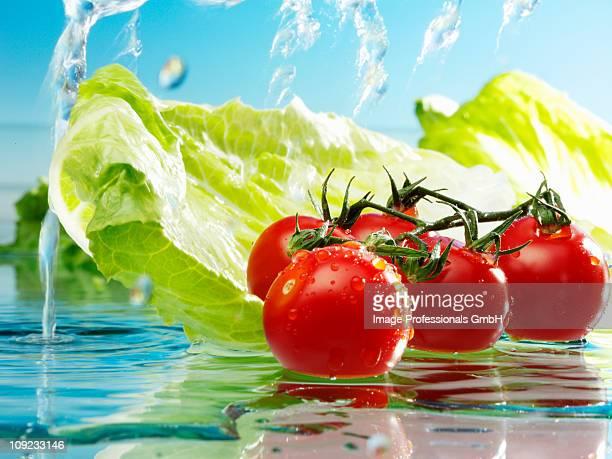 Water splashing on tomatoes and romaine lettuce