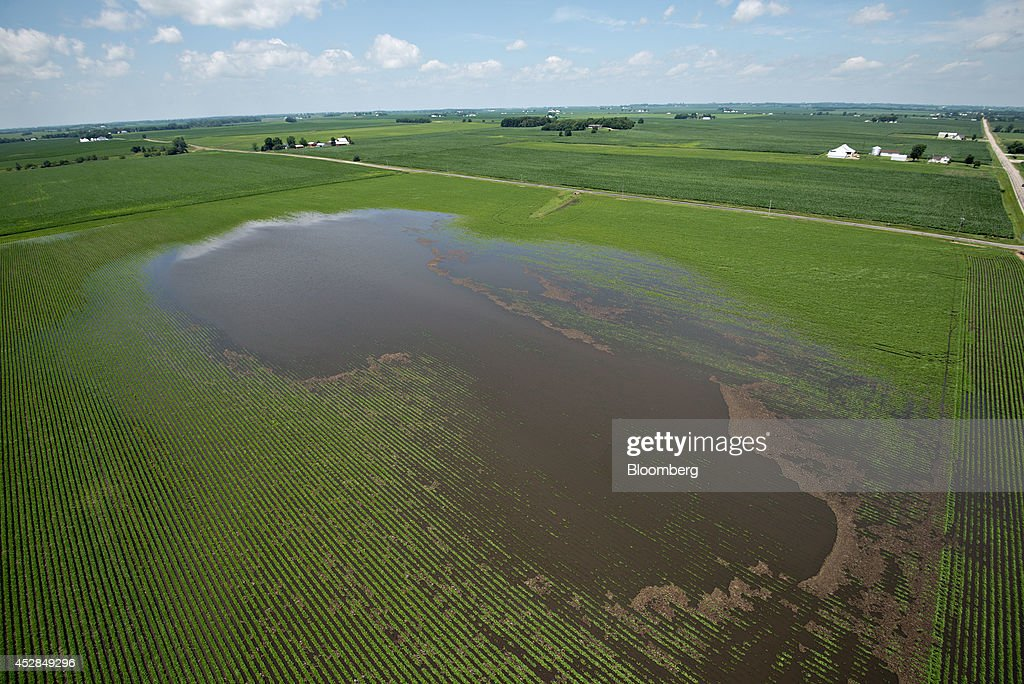 Water stands in a flooded soybean field near Wyanet, Illinois, U.S., on Tuesday, July 1, 2014. A powerful wind storm, known as a derecho, swept from the Midwest to the western Great Lakes yesterday, bringing devastating wind gusts, reported tornadoes and heavy rain into Illinois, Iowa, and Nebraska according to Weather.com. Despite the weather, soybeans fell to the lowest since December 2011 as the outlook for record seedings boosted speculation that supplies will be ample in the U.S. Photographer: Daniel Acker/Bloomberg via Getty Images