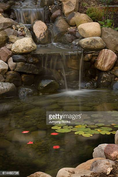 Water trickling into pond with stones and floating leaves in backyard garden