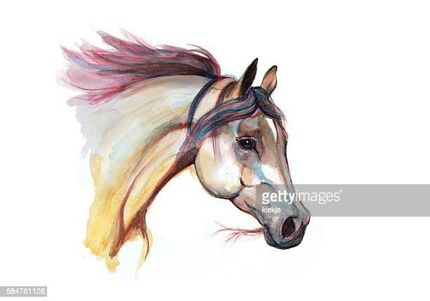 Acuarela cabeza de caballo