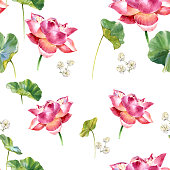 Watercolor illustration painting of leafs and lotus , seamless pattern on white background