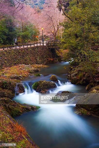 Waterfall and Nature of Minoh, Osaka, Japan