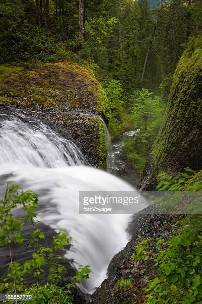Waterfall cascading down narrow forest ravine wilderness