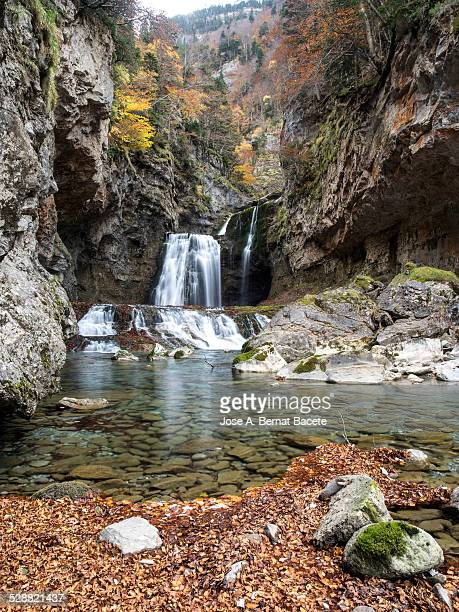 Waterfall in a forest in the Pyrenees in autumn