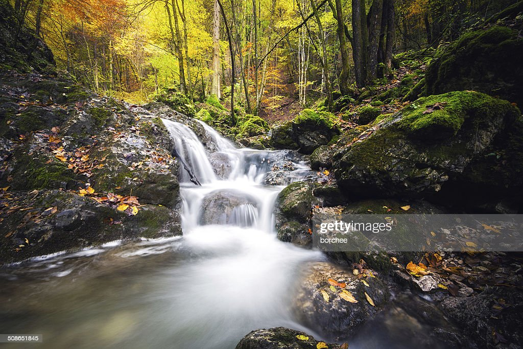 Waterfall In Autumn : Stock Photo