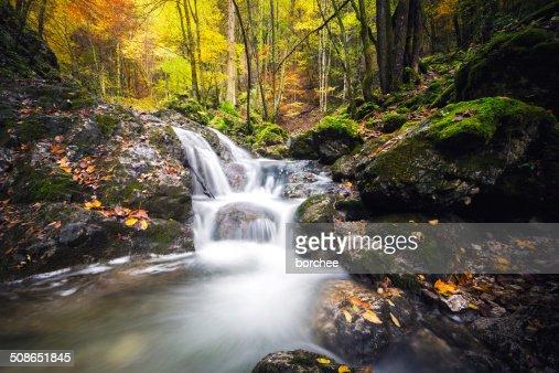 Waterfall In Autumn : Stock Photo