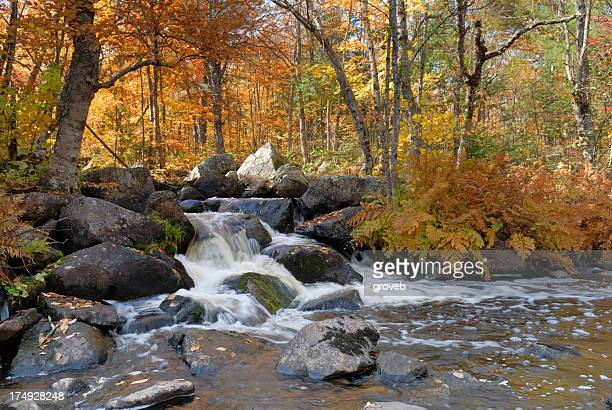 Waterfall in beautiful Autumn setting