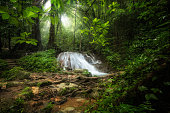 Waterfall in deep tropical jungle.