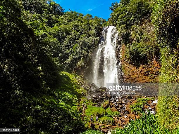 Waterfall in Faxinal