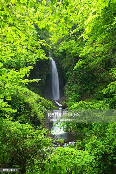 Waterfall in Itajiki valley, Yamanashi Prefecture