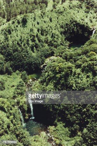 Waterfall in Rainforest, Maui, Hawaii : Stock Photo