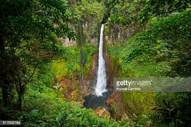 Waterfall in the middle of the jungle- Costa Rica