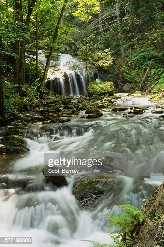 Waterfall in the woods : Stock-Foto