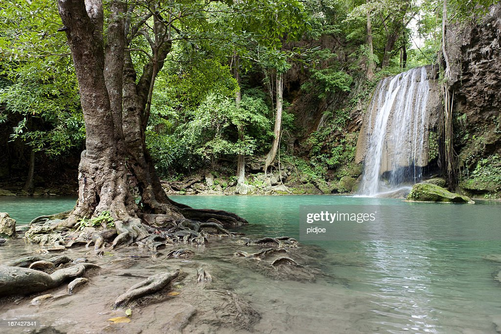 waterfall in tropical rainforest : Stock Photo