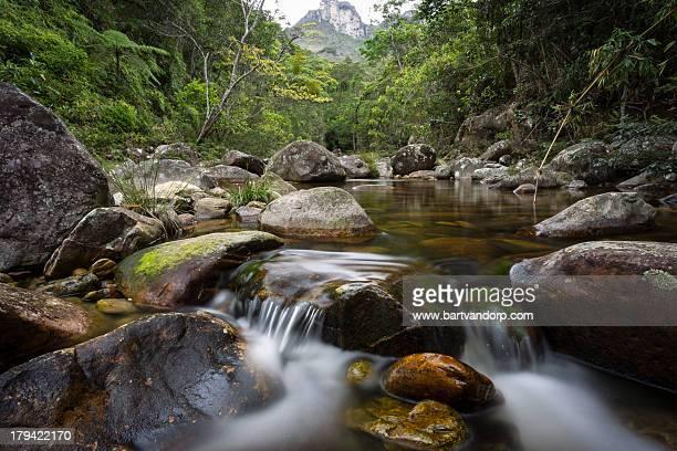 Waterfall of purification