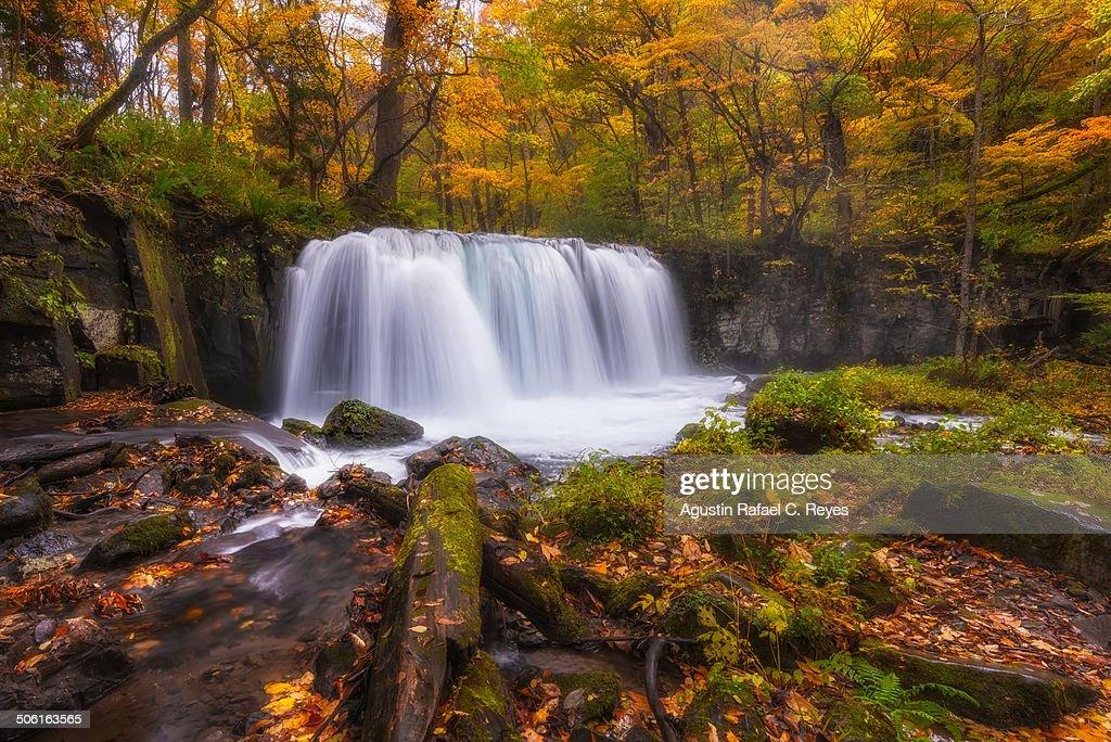 Waterfalls during autumn in Oirase Stream