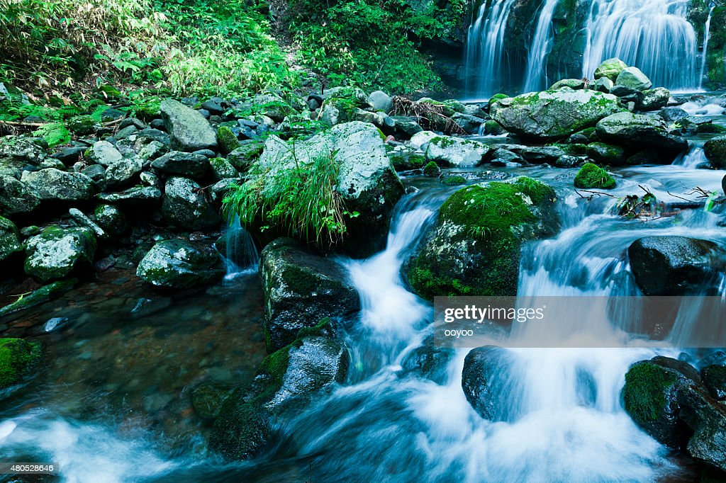 Waterfalls & Mountain Stream in Summer : Stock Photo