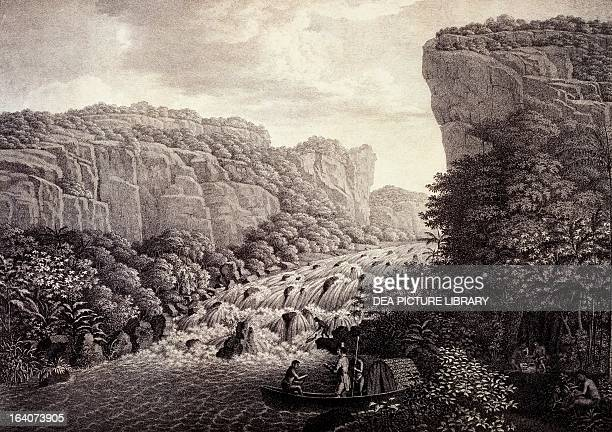 Waterfalls of AraraCoara engraving from the Natural History of Palms by Carl Friedrich Philipp von Martius 18231850 a book based on the data...