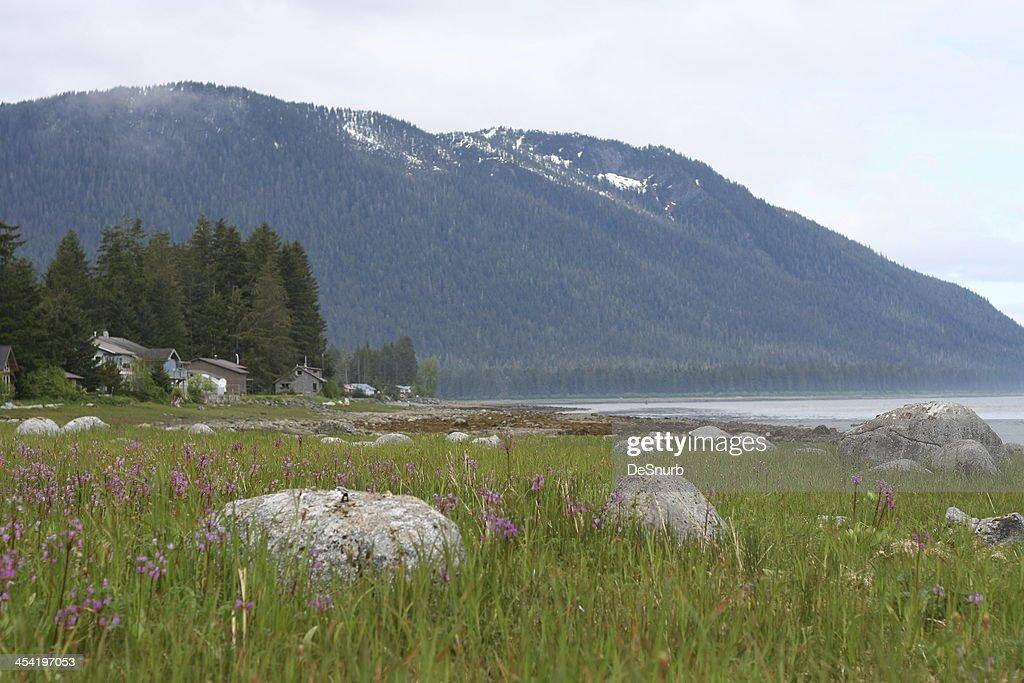Waterfront Homes Near Petersburg Alaska : Stock Photo