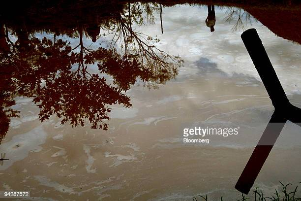A waterhole contaminated by an oil leak from a nearby oil facility close to the Yasuni National Park is seen in Orellana Province Ecuador on Thursday...