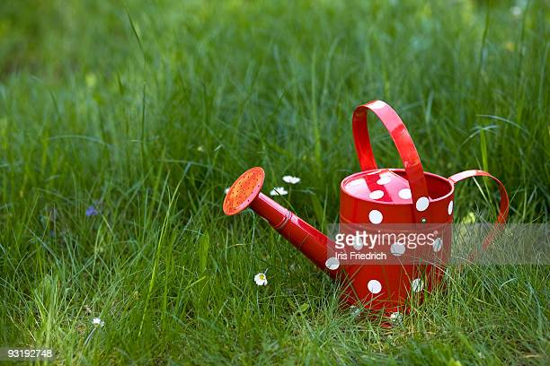 A watering can on grass