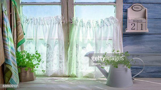 Watering standing with herbs in sunny kitchen : Stock Photo