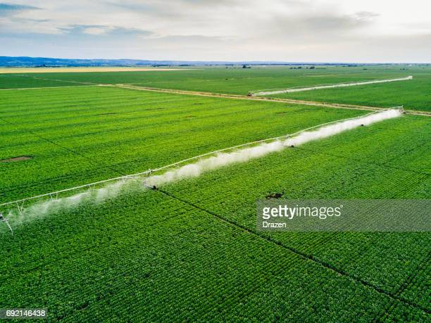 Watering the crops with irrigation wheels and equipment in summer