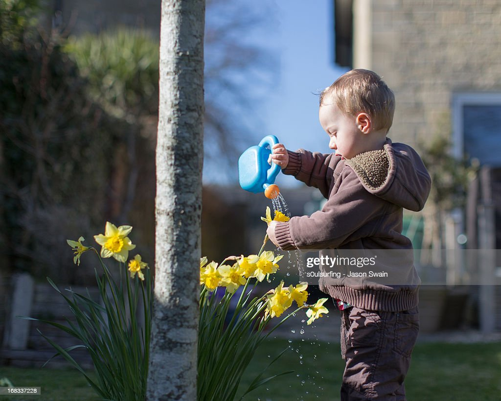 Watering the plants, toddler style : Stock Photo