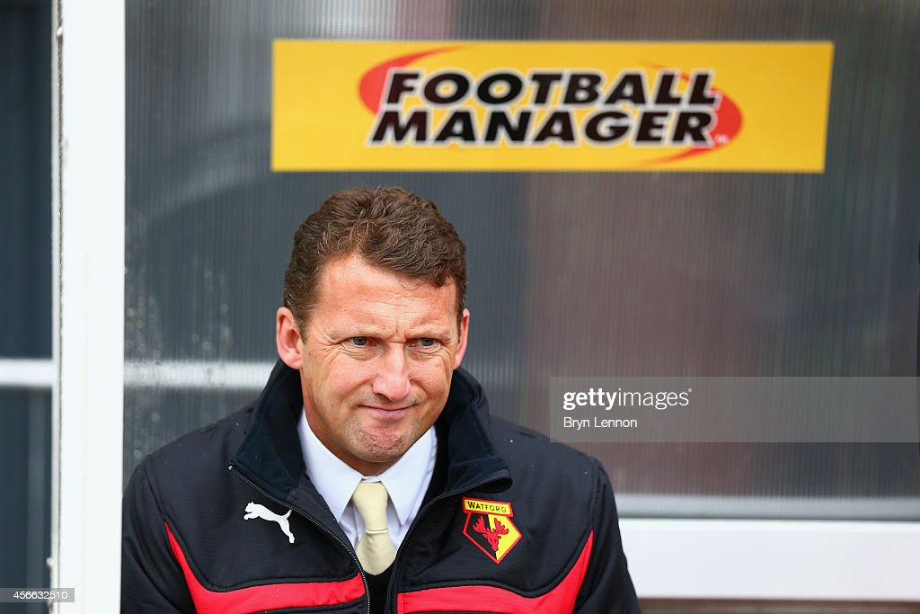 Watford Head Coach <a gi-track='captionPersonalityLinkClicked' href=/galleries/search?phrase=Billy+McKinlay&family=editorial&specificpeople=2992598 ng-click='$event.stopPropagation()'>Billy McKinlay</a> looks prior to the Sky Bet Championship match between Watford and Brighton & Hove Albion at Vicarage Road on October 4, 2014 in Watford, England.