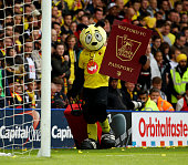 Watford mascot Harry the Hornet packs his bag for the summer during the Sky Bet Championship match between Watford and Sheffield Wednesday at...