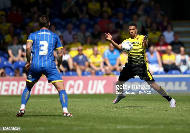 Watford's Etienne Capoue in action