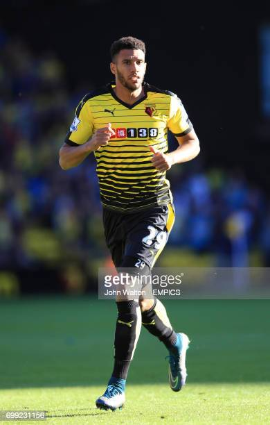 Watford's Etienne Capoue