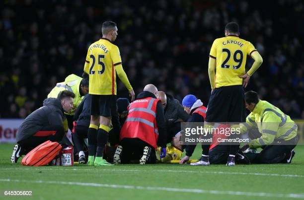 Watford's Mauro Zarate receives treatment during the Premier League match between Watford and West Ham United at Vicarage Road on February 25 2017 in...