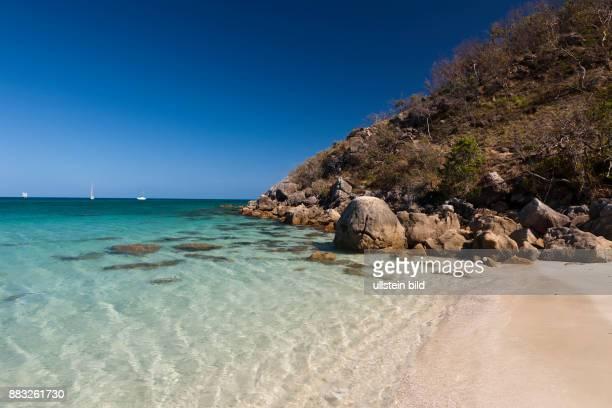 Watsons Bay Lizard Island Great Barrier Reef Australia