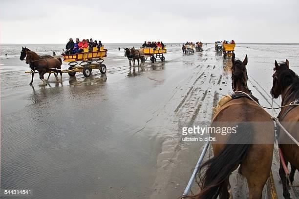 Wattkutschenfahrt bei Ebbe an der Nordsee Pril Animals Anzahl Ausflug autumn Badestrand bank beach Besucher boy break calm Calmness carriage channel...