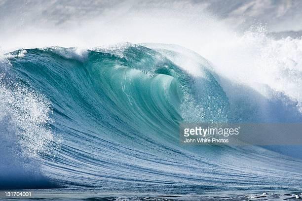 Wave in Pristine ocean