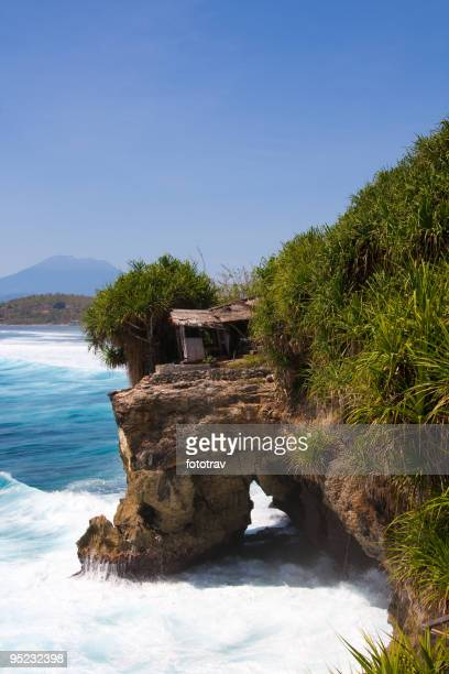 Wave on beautiful coastline