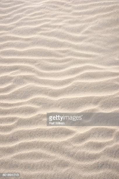 Wave structure in sand, Blavand -Blavand-, Varde Kommune, Jutland, Denmark