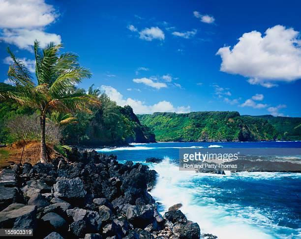 Wellen an der Küste in Maui, Hawaii