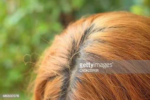 Ondulato oro peli di una bellissima donna : Foto stock