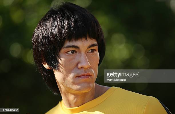 A wax figure of Chinese actor Bruce Lee is seen at the Chinese Garden of Friendship on August 13 2013 in Sydney Australia The Bruce Lee wax figure...