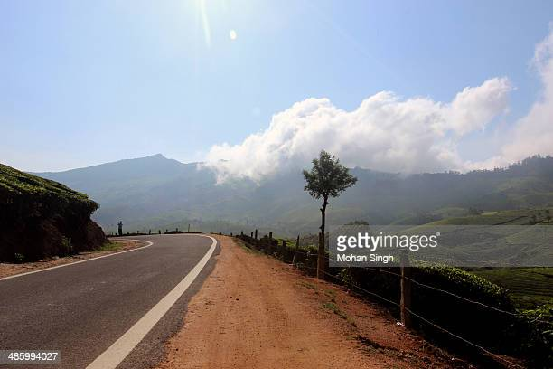 Way from Munnar to Thekkady