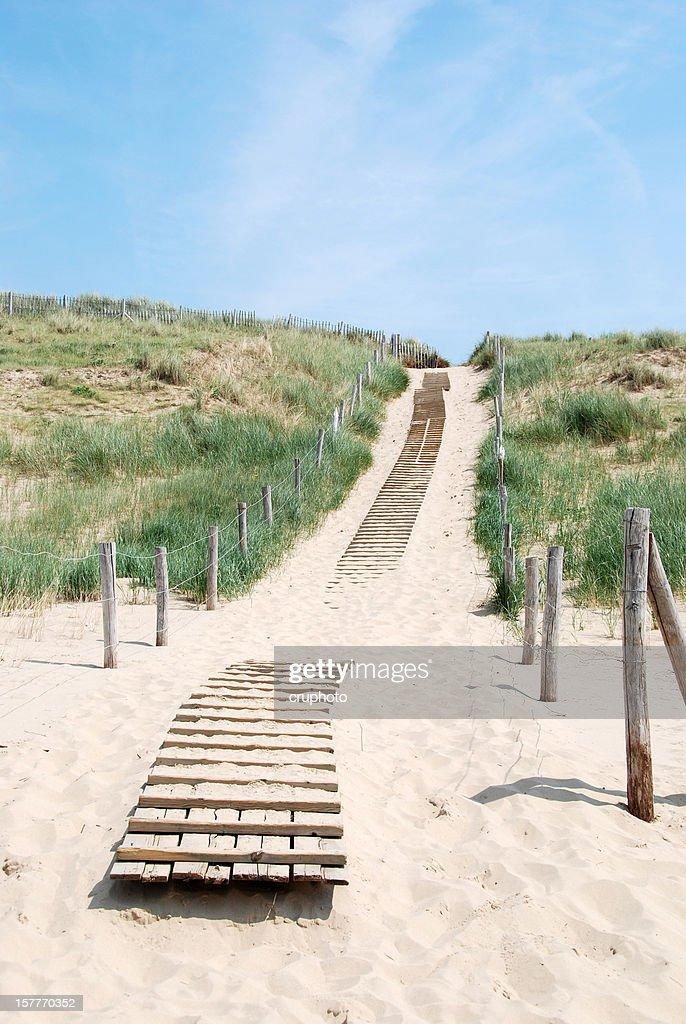 Way through the dunes