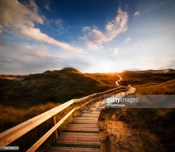 Chemin à travers les dunes avec un immense ciel