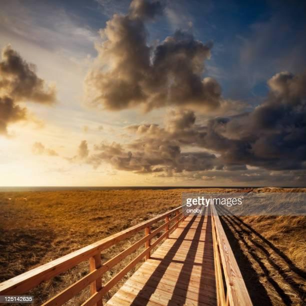 Way to Horizon