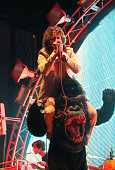 Wayne Coyne of The Flaming Lips performs during the 2009 Pitchfork Music Festival at Union Park on July 19 2009 in Chicago Illinois