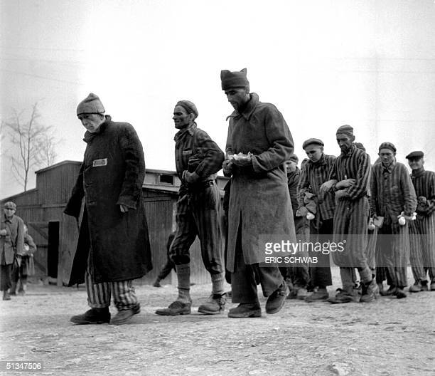 Weak and ill survivors of the Nazi concentration camp in Buchenwald march April 1945 towards the infirmary after the liberation of the camp by Allied...