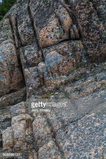 Weathered Granite, Acadia NP : Foto de stock
