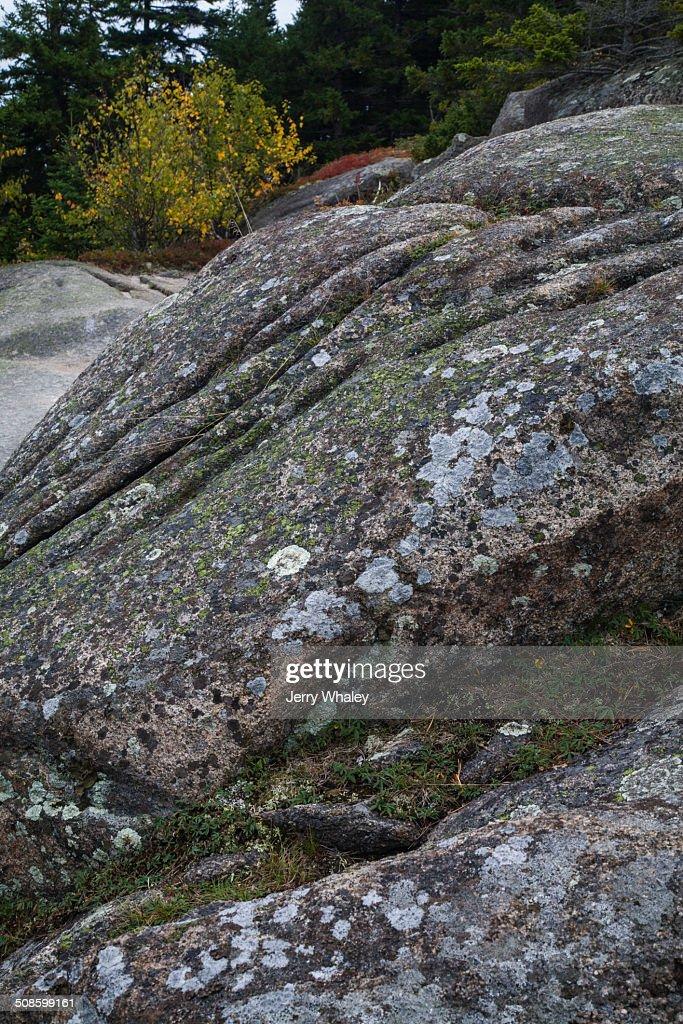 Weathered Granite on Beech Mtn Trail, Acadia : Foto de stock